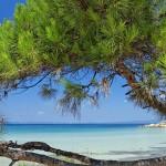 Греція, Халкідікі